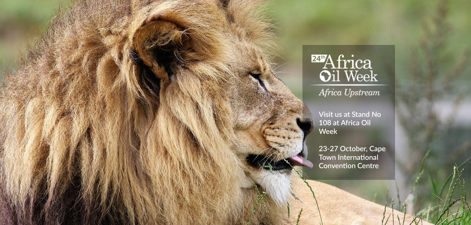 africa-oil-week-oct